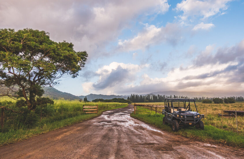 Kipu Ranch Kauai © Joel Hartz